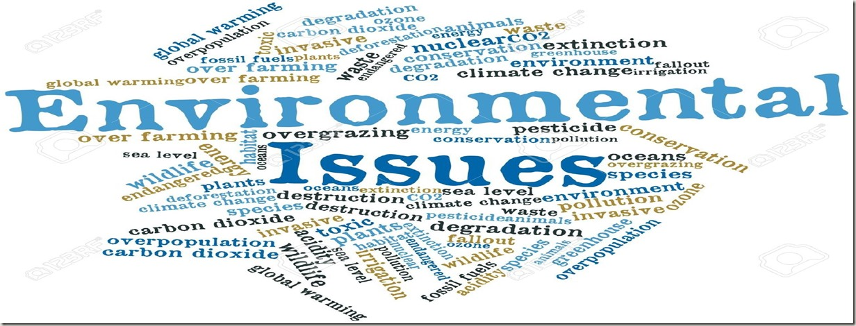 Term papers environmental issues